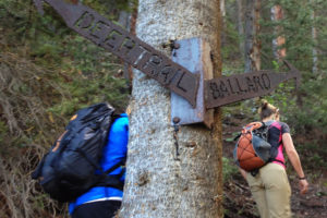 Upcoming Offerings: Mountain Club Work Trail Day + WFR Course