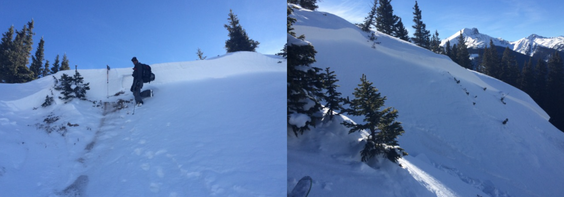 January 8th Backcountry Update