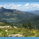 Telluride Regional Trails Vision Survey