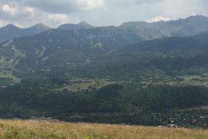Telluride Regional Trails Vision Survey Results