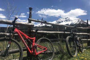 Spring Trails Update